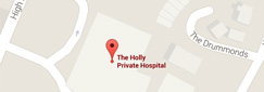 The Holly Hospital